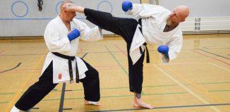 bushido karate