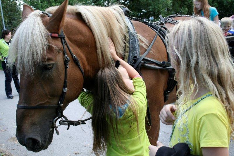 SILTAMAKI_Tytöt ja hevonen.